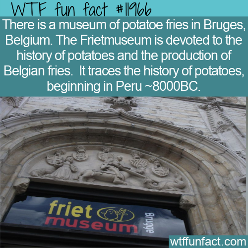 WTF Fun Fact - Frietmuseum