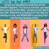 WTF Fun Fact – Jump Jump