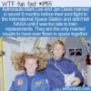 WTF Fun Fact – Married Couple In Space Together