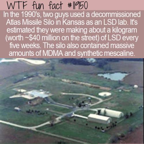 WTF Fun Fact - Missile Silo LSD Lab