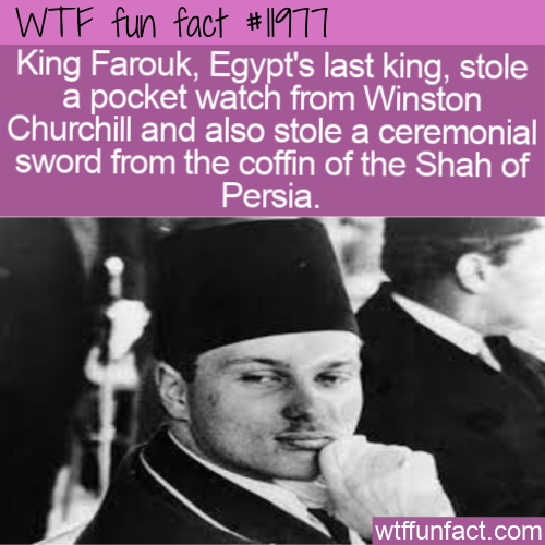 WTF Fun Fact - The Egyptian King Who Stole