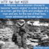 WTF Fun Fact – Balkan Sworn Virgin