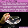 WTF Fun Fact – Diamond Is Forever Martini