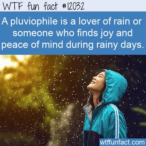 WTF Fun Fact - Pluviophile