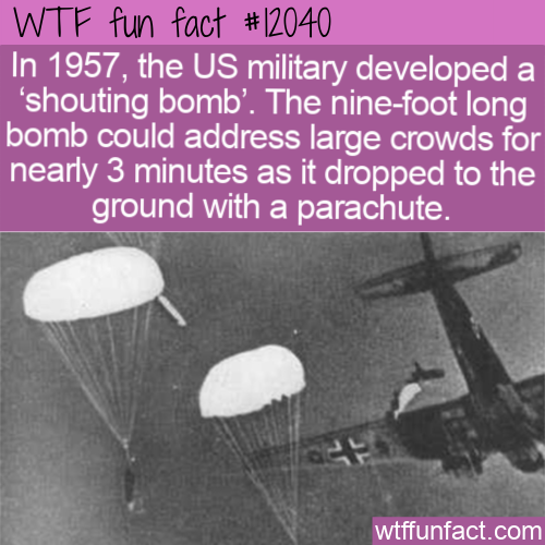 WTF Fun Fact - Shouting Bomb