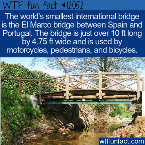 WTF Fun Fact - World's Smallest International Bridge