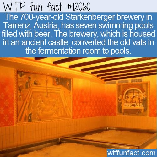 WTF Fun Fact - Austrian Beer Pools