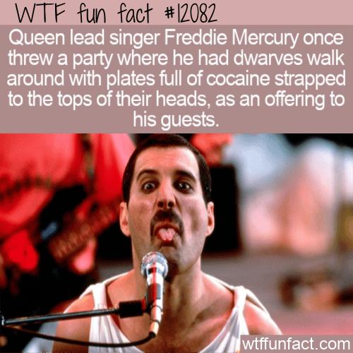 WTF Fun Fact - Freddie Mercury Wild Party