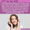 WTF Fun Fact – Why Humans Enjoy Music