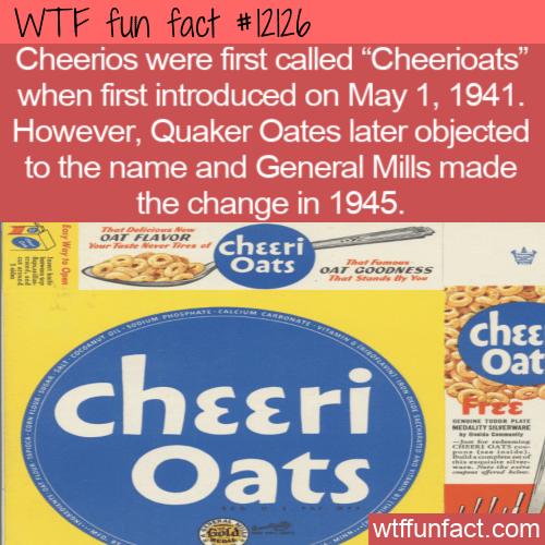 WTF Fun Fact - Cheerioats