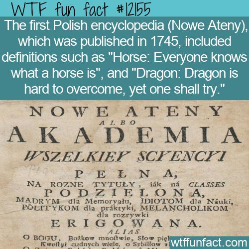 WTF Fun Fact - Funny Polish Encyclopedia Entries