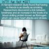 WTF Fun Fact – Loneliness As Bad As Smoking