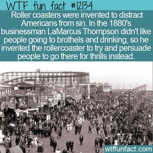 WTF Fun Fact - Rollercoaster vs Sin