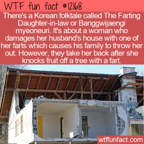 WTF Fun Fact - The Farting Daughter-in-Law