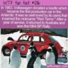 WTF Fun Fact – The Red Terror