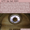 WTF Fun Fact – Untergunther