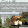 WTF Fun Fact – Barking and Snorting Train