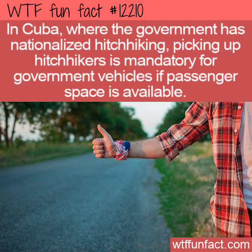 WTF Fun Fact - Nationalized Hitchhiking