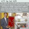 WTF Fun Fact – The Stick Toy