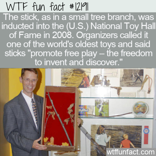 WTF Fun Fact - The Stick Toy