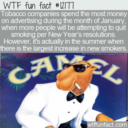 WTF Fun Fact - Tobacco Ad Spend