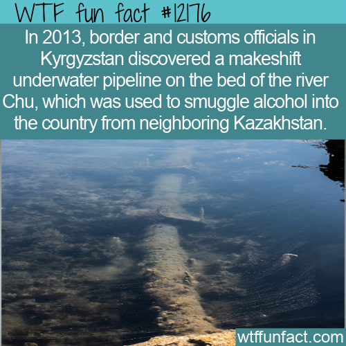 WTF Fun Fact - Underwater Alcohol Pipeline