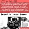 WTF Fun Fact – Vine-glo Grape Juice