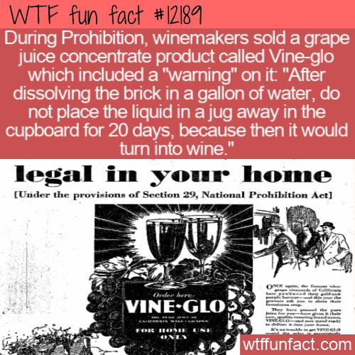 WTF Fun Fact - Vine-glo Grape Juice